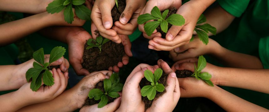 Projeto Aproxima e a sustentabilidade